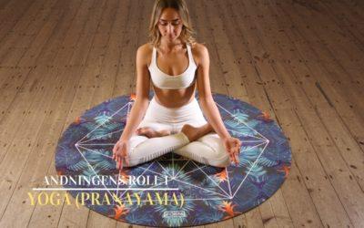 Yoga och andningen (pranayama)